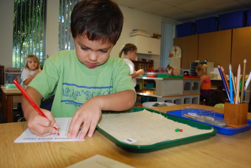 brevard_montessori_school
